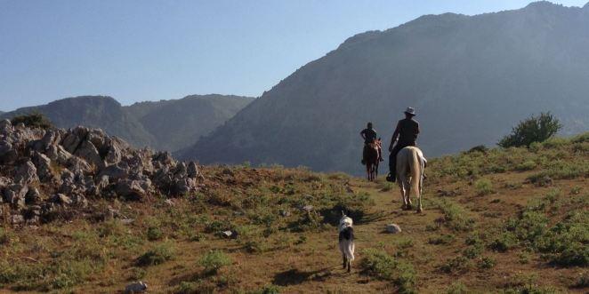 horseriging madonie